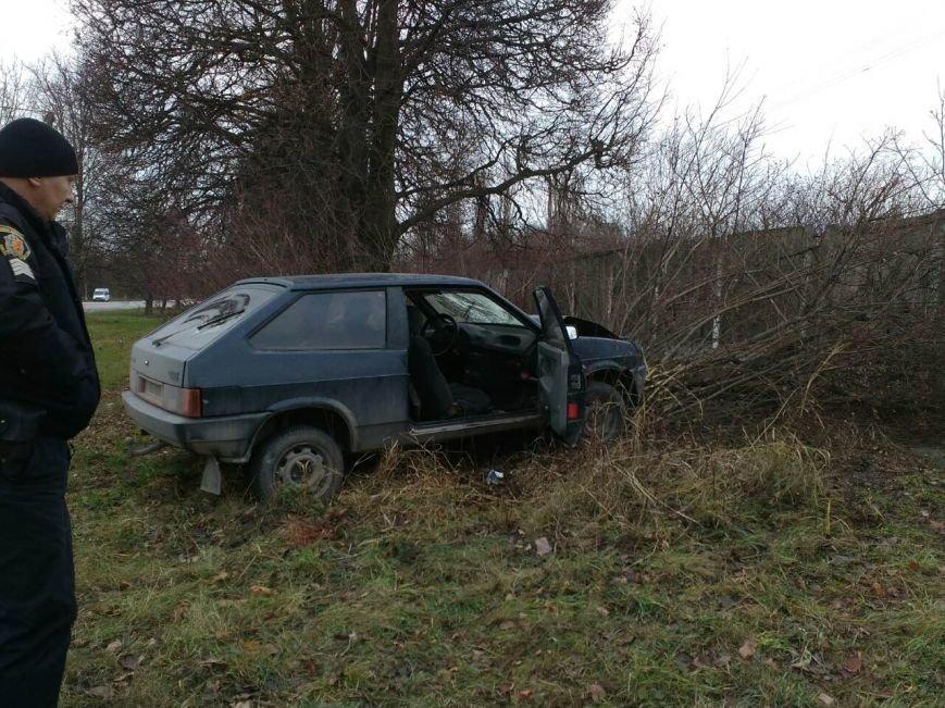 У Кам'янці п'яний водій зіткнувся з електроопорою, фото-1