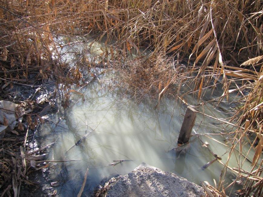 Журналисты нашли, кто загрязняет Песчанский ручей в Мелитополе  (фото), фото-6