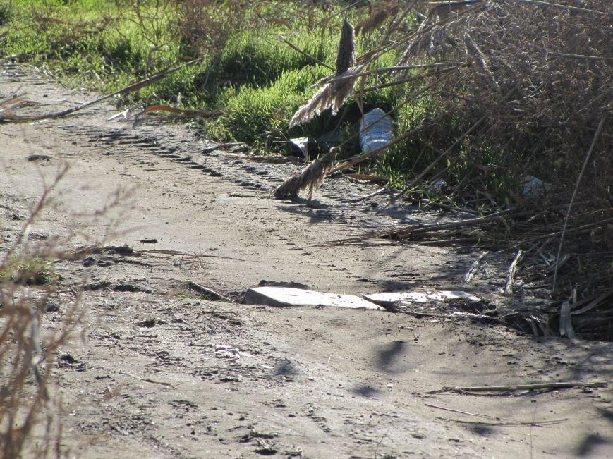 Журналисты нашли, кто загрязняет Песчанский ручей в Мелитополе  (фото), фото-1