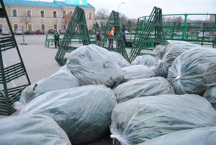 Световые орнаменты и огромные шары: какой будет главная елка Харькова в этом году, фото-3