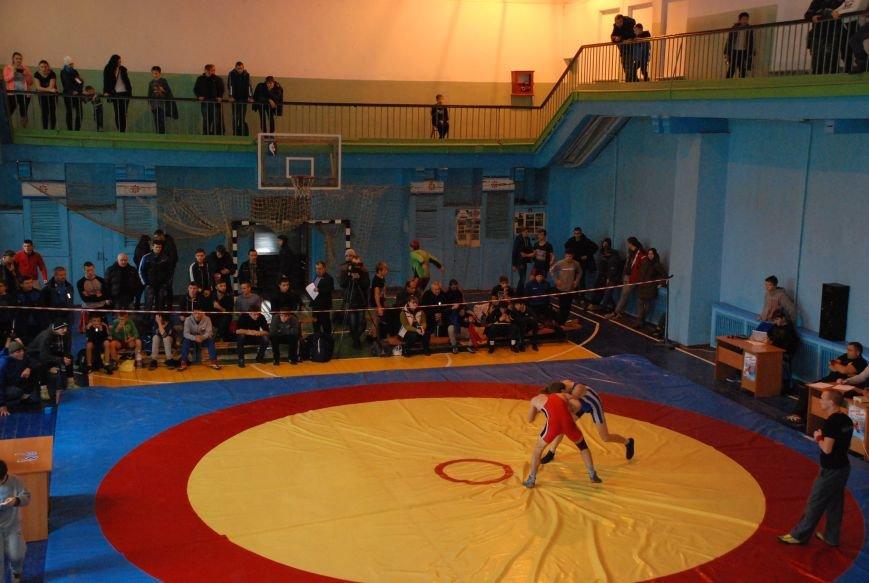 В Мелитополе соревновались лучшие борцы Украины, фото-1