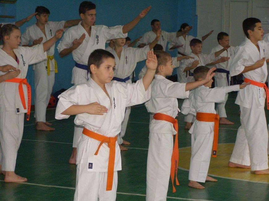 Спортсмены сдали экзамен президенту Национальной федерации киокушин каратэ Украины, фото-3