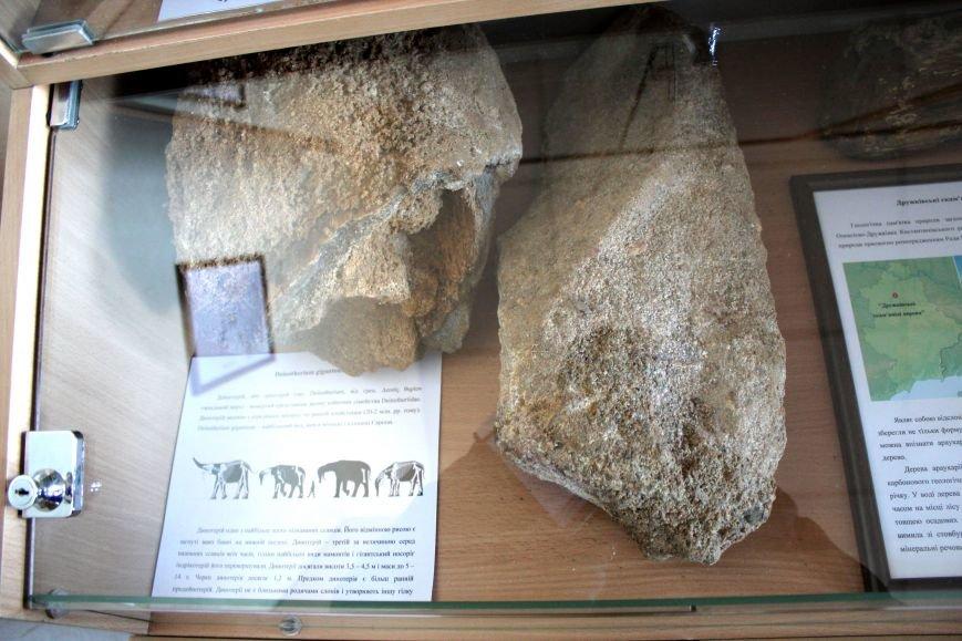 В Мариуполе открылся Музей истории и археологии МГУ (ФОТО), фото-8