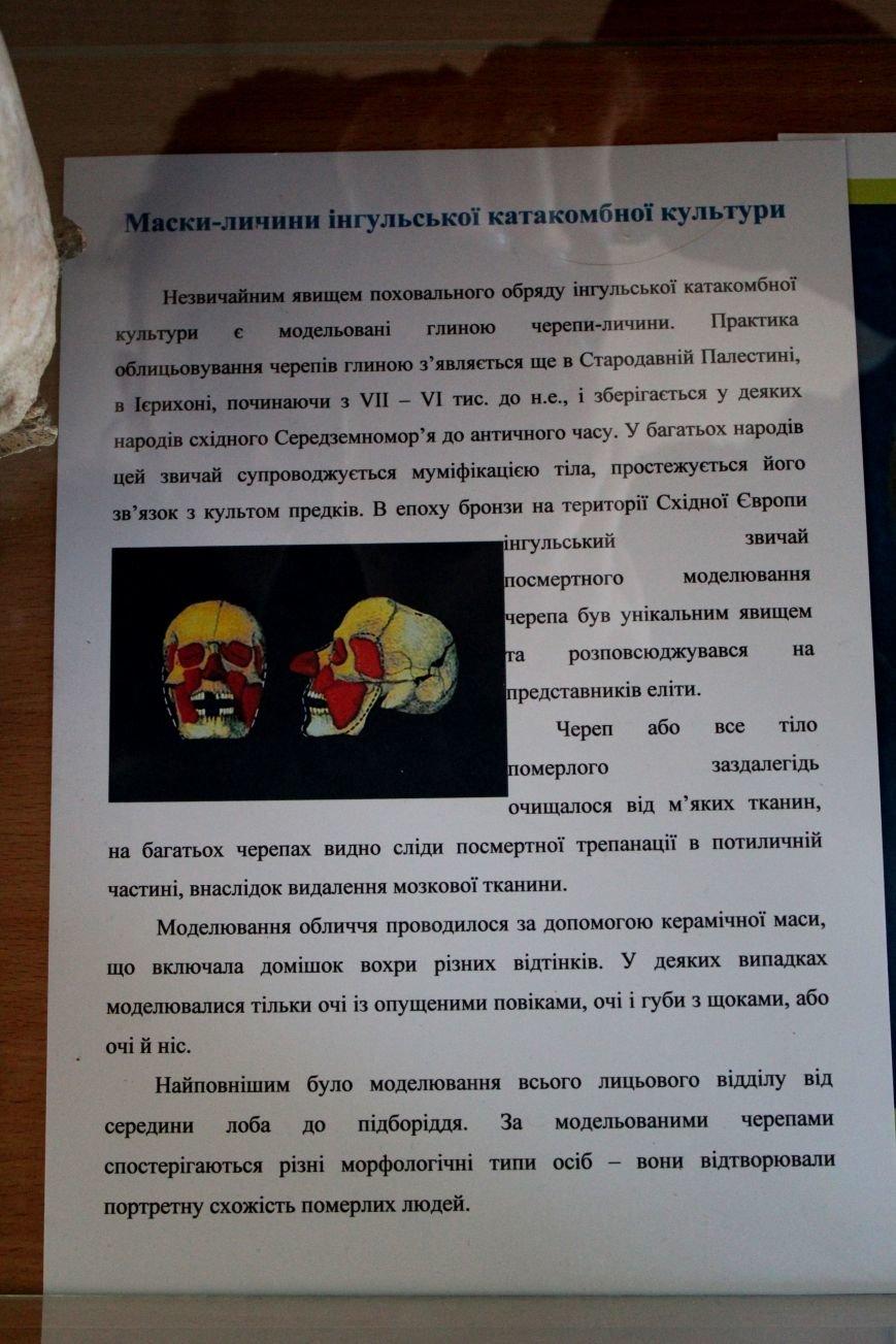 В Мариуполе открылся Музей истории и археологии МГУ (ФОТО), фото-4