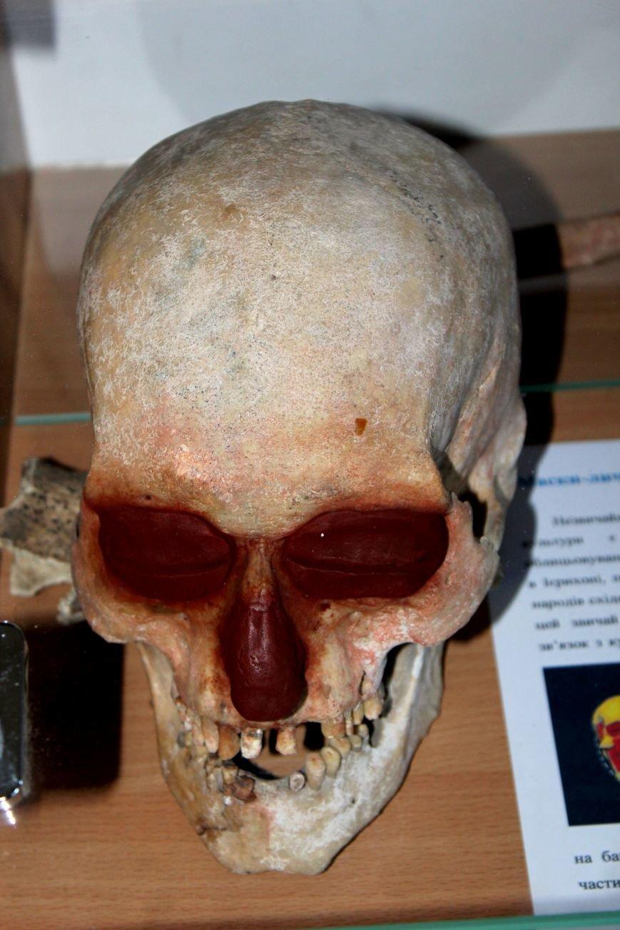 В Мариуполе открылся Музей истории и археологии МГУ (ФОТО), фото-3
