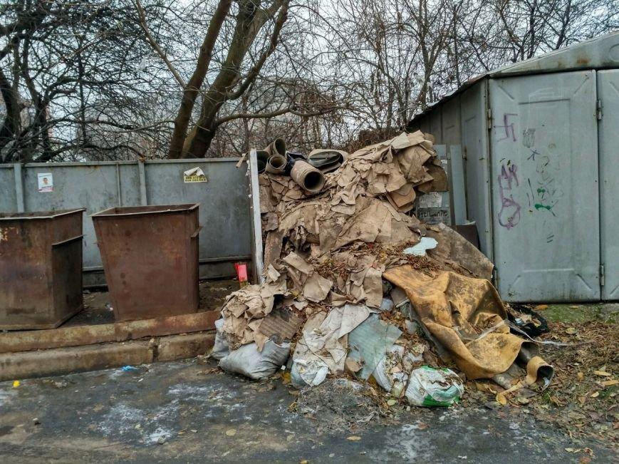 Мусорный потоп в Вишневом: продолжение (ФОТО), фото-2
