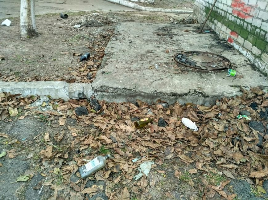 Мусорный потоп в Вишневом: часть 3 (ФОТО), фото-2
