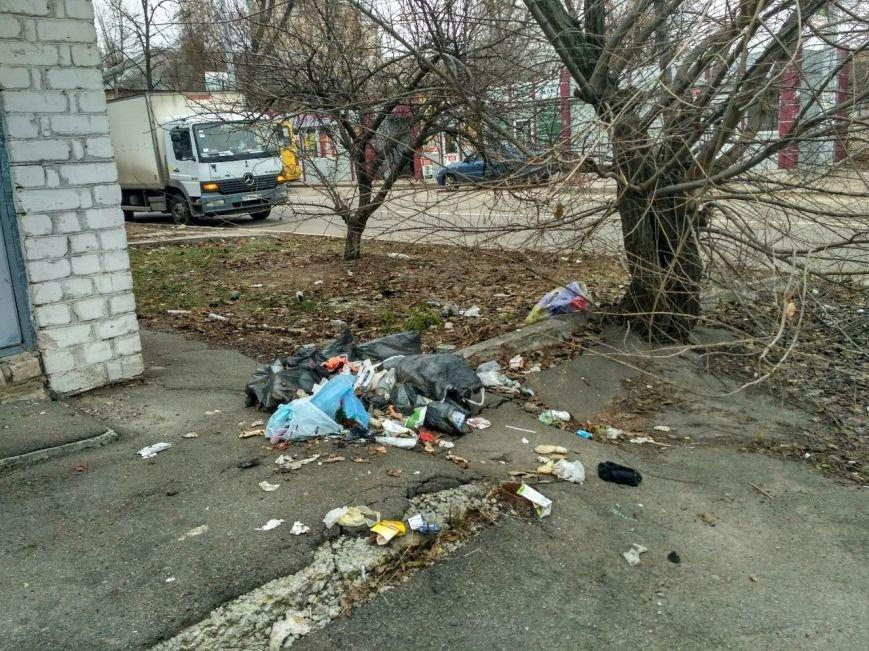 Мусорный потоп в Вишневом: часть 3 (ФОТО), фото-1