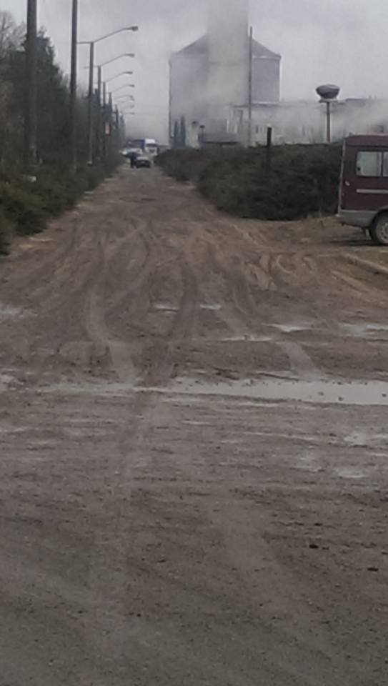 На Чортківщині замість снігу з неба падає жом з місцевого цукрового заводу (фото, відео), фото-1
