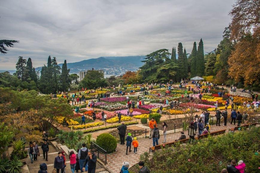 На Балу хризантем Никитского ботанического сада выбрали Королеву и Принцессу, фото-3