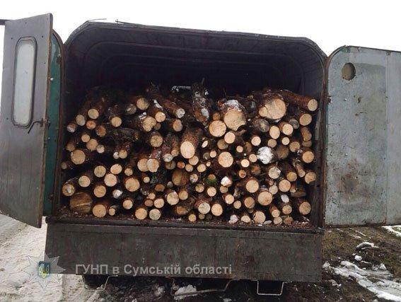 На Сумщине полицейские задержали грузовики с древесиной и спиртом без соответствующих документов (ФОТО), фото-5