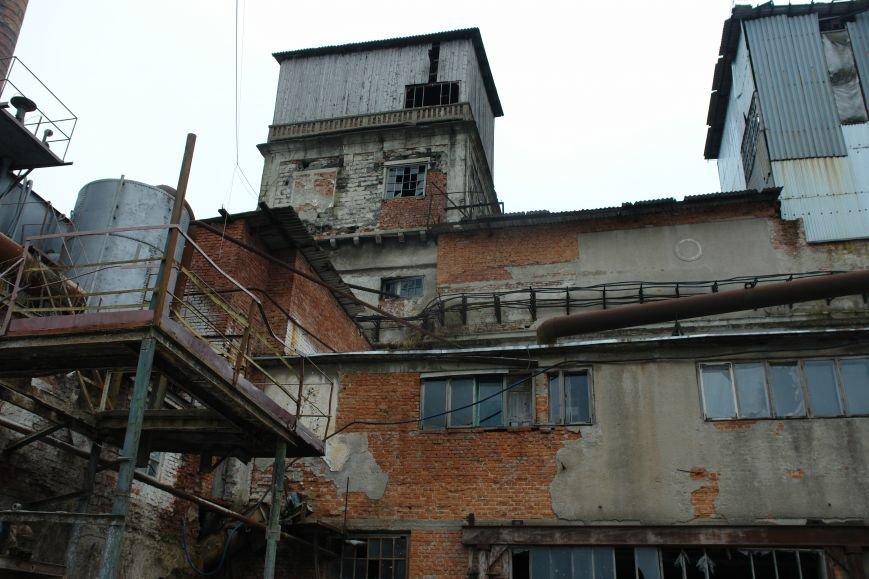Про «солодкі» розбірки в Городенці. Як знищують потужний цукровий завод в області (ФОТО+ВІДЕО), фото-11
