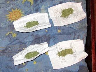 У верховинця, якого підозрювали в крадіжці, натомість знайшли чимало марихуани. Фото, фото-4