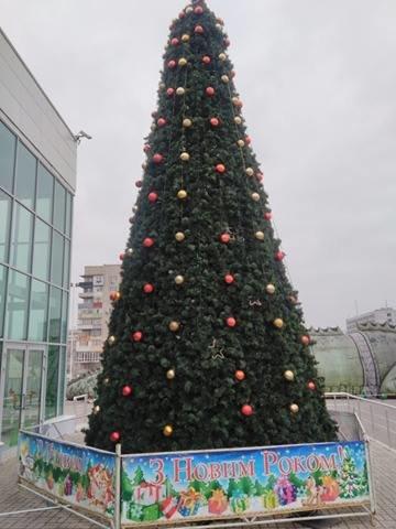 Свято наближається: в Мелитополе установлена первая елка, фото-1