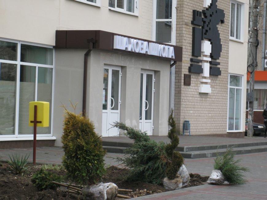 Зеленый сквер создают возле шахматной школы (фото), фото-3