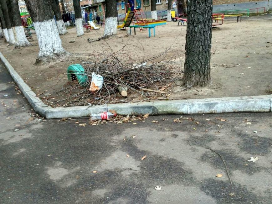 Мусорный потоп в Вишневом: часть 4 (ФОТО), фото-1