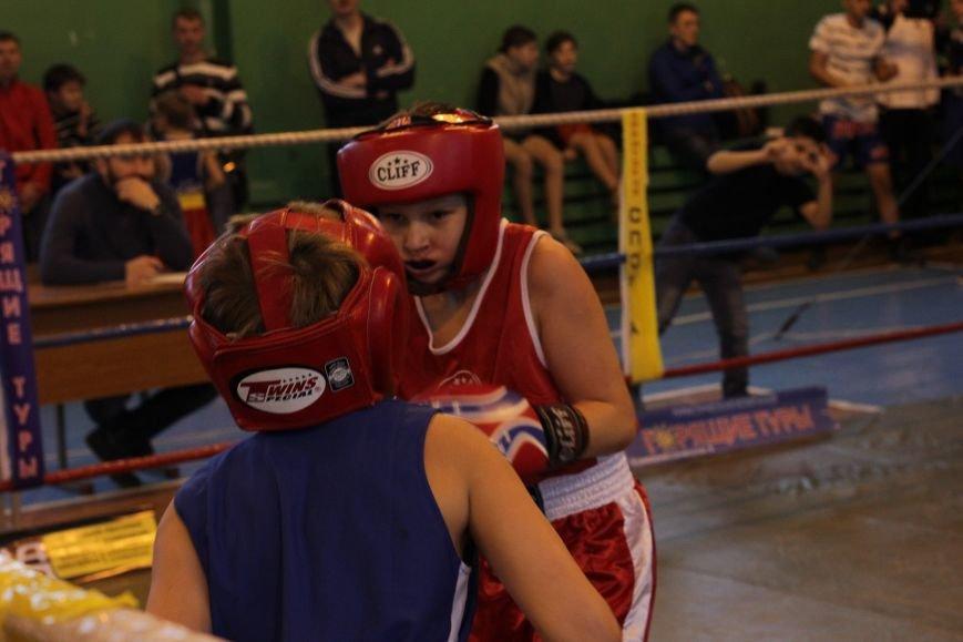 Праздник бокса удался, фото-2