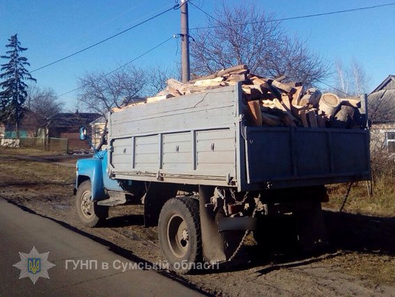 На Сумщине задержали груз древесины и металла без документов (ФОТО), фото-2