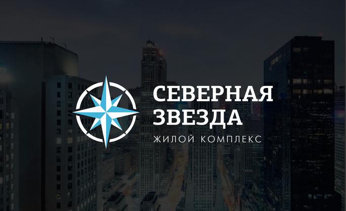 северная звезда лого