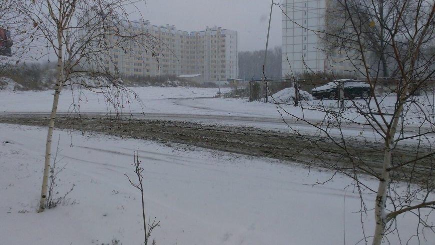 Неоднозначная уборка в Вишневом (ФОТОРЕПОРТАЖ), фото-11