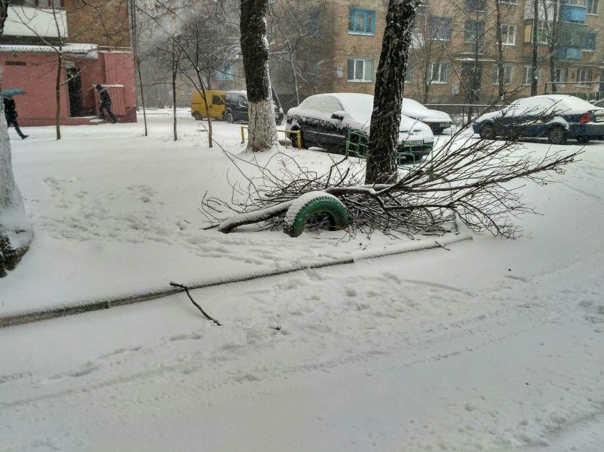 Неоднозначная уборка в Вишневом (ФОТОРЕПОРТАЖ), фото-6