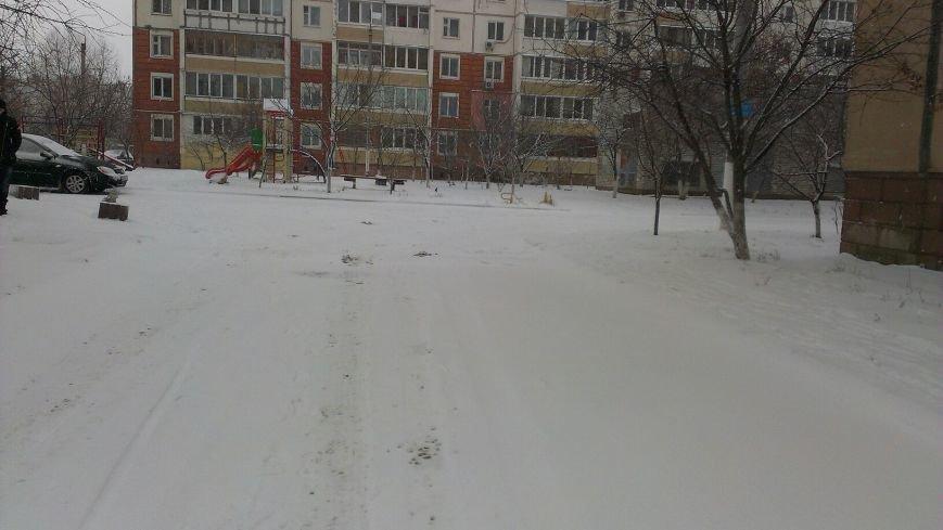 Неоднозначная уборка в Вишневом (ФОТОРЕПОРТАЖ), фото-13