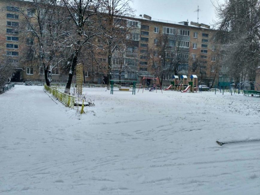 Неоднозначная уборка в Вишневом (ФОТОРЕПОРТАЖ), фото-4