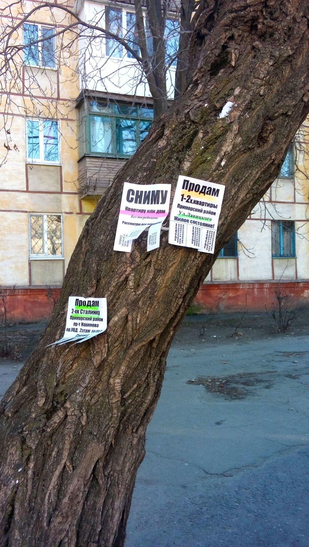 Мариуполь страдает от незаконной рекламы (ФОТО), фото-1