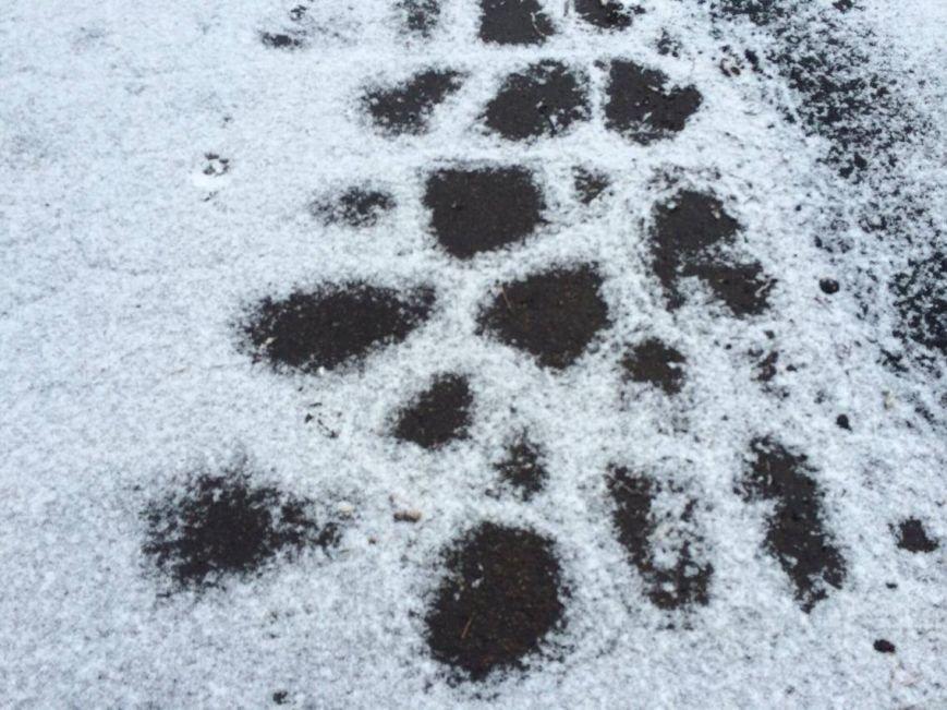 Первый снег в Мариуполе  порадовал с утра, но уже успел растаять (ФОТО), фото-10