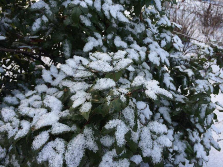 Первый снег в Мариуполе  порадовал с утра, но уже успел растаять (ФОТО), фото-17