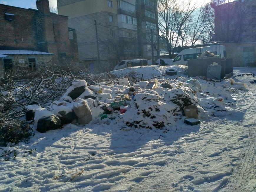 Уборки уборками, а свалки свалками (ФОТО), фото-2