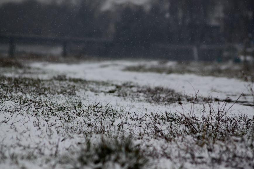 В Ужгород йде сильний сніг, фото-8