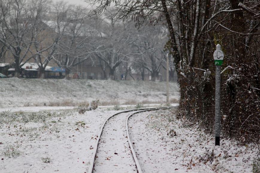 В Ужгород йде сильний сніг, фото-11