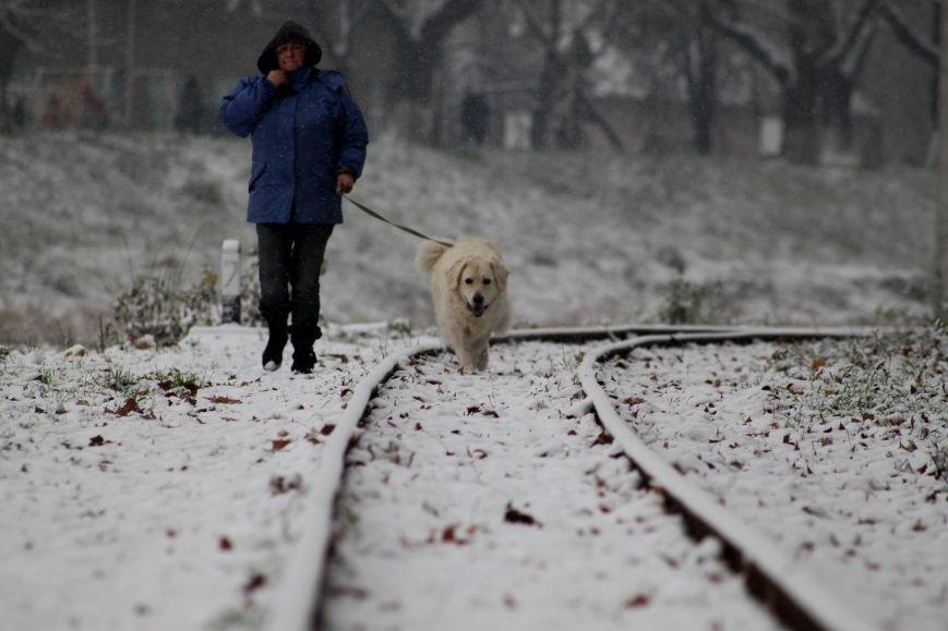 В Ужгород йде сильний сніг, фото-5