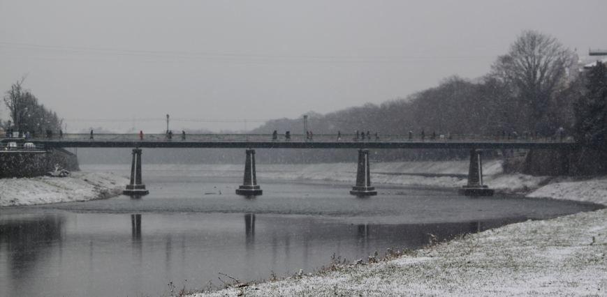 В Ужгород йде сильний сніг, фото-14