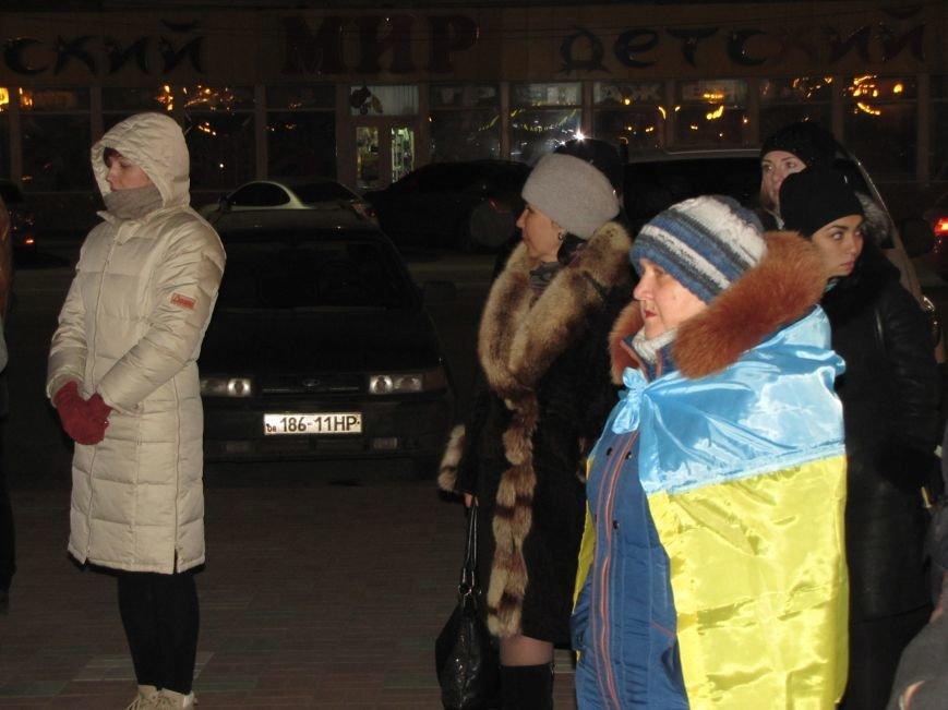 Мелитопольские активисты подвели итоги Революции Достоинства (фото, видео), фото-7