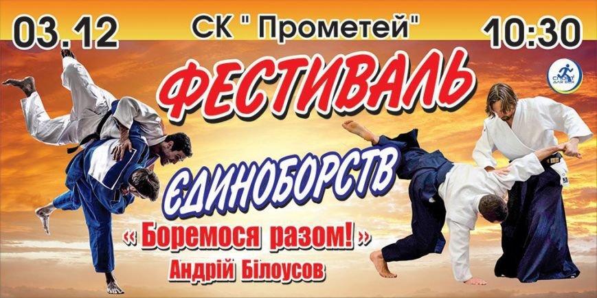 Каменчан приглашают на Фестиваль единоборств, фото-2