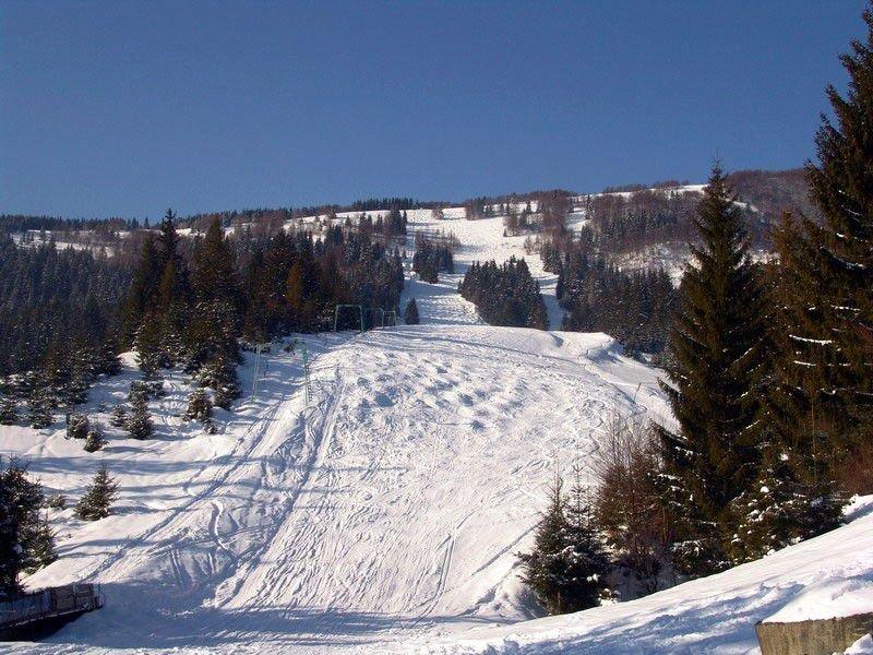 У скільки обійдеться відпочинок на гірськолижних курортах Закарпаття: огляд, фото-6