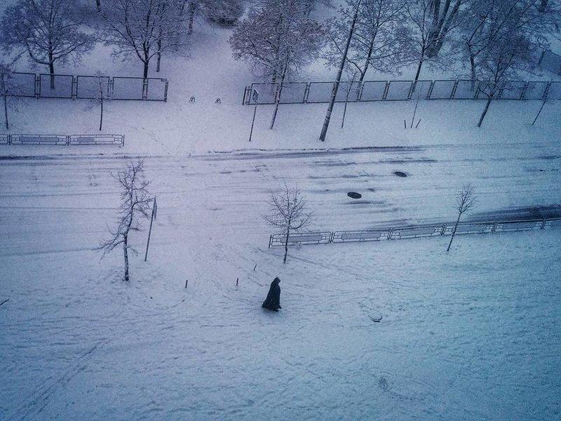 Курьезы недели: Скотиняка для Ляшко, резервная армия Яроша, «украинский след» падения «Прогресса», фото-4