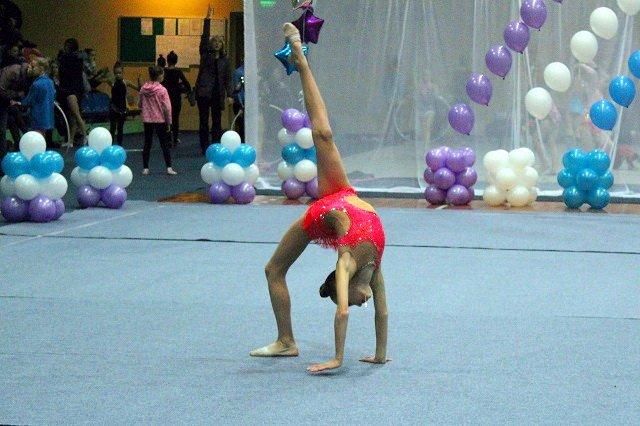 Гімнастки-4