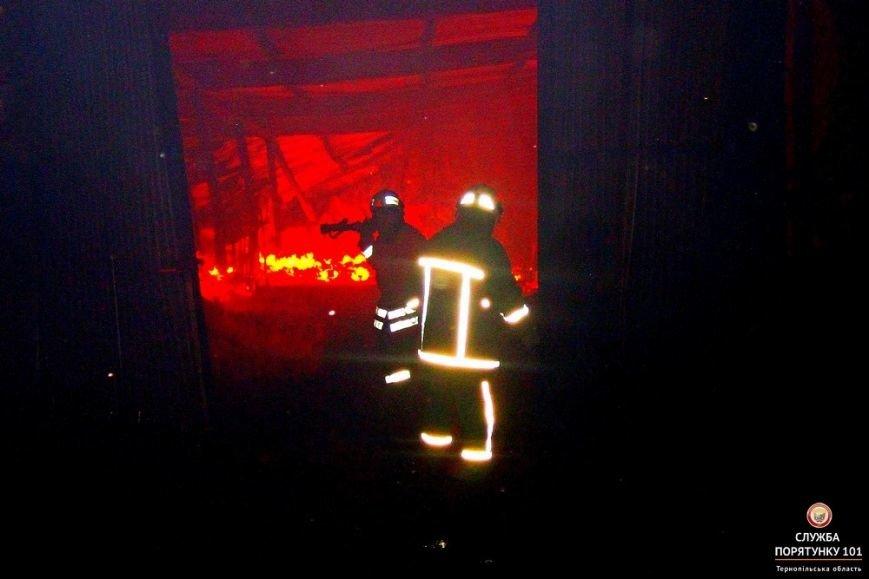 На Тернопільщині МНСники боролись з вогняною стихією (фото), фото-1