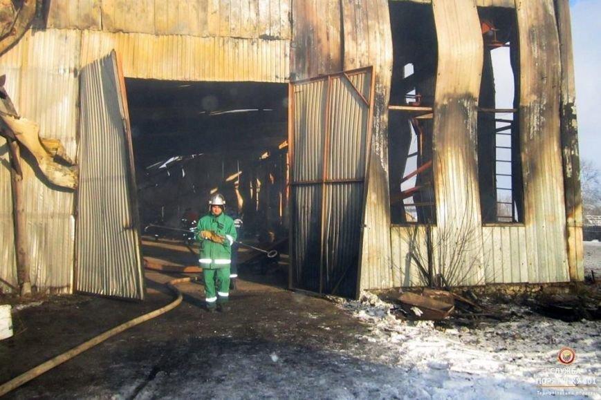 Як на Тернопільщині 5 годин гасили грандіозну пожежу (фото), фото-3