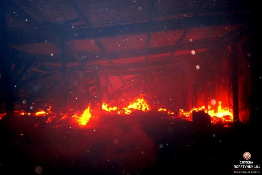 Як на Тернопільщині 5 годин гасили грандіозну пожежу (фото), фото-1
