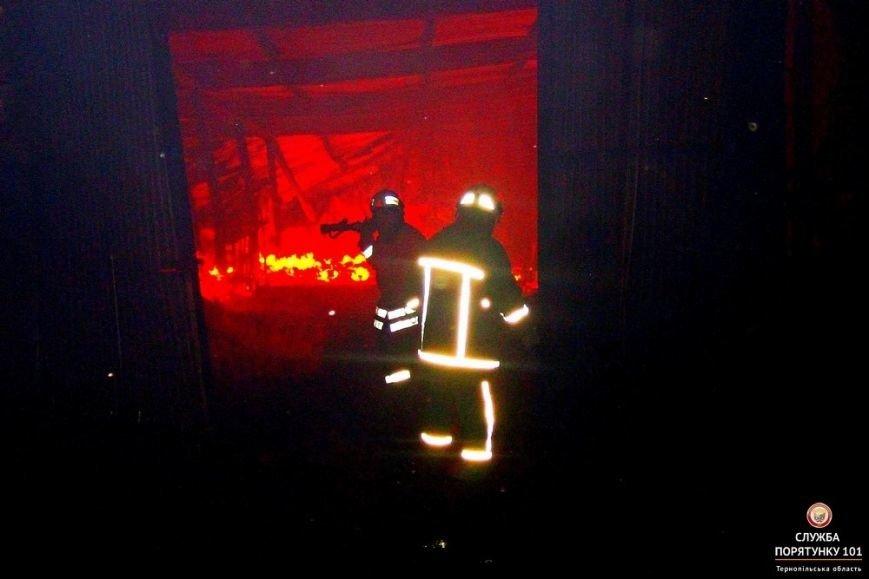Як на Тернопільщині 5 годин гасили грандіозну пожежу (фото), фото-2