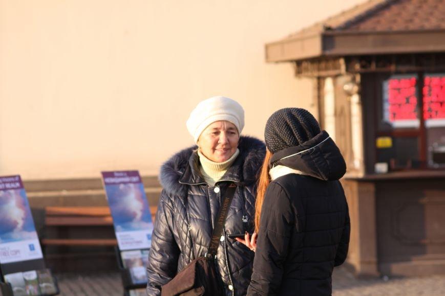 """В Ужгороді будуть три """"живі"""" новорічні ялинки: репортаж, фото-3"""
