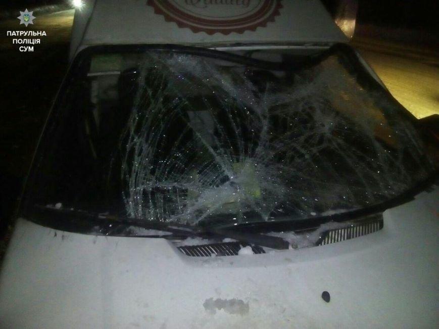 В Сумах под колеса машины попали двое рыбаков, фото-1