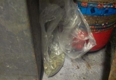 """Як собака Ріна розшукала наркотики у вагоні поїзда """"Прага-Київ"""": фото, фото-1"""