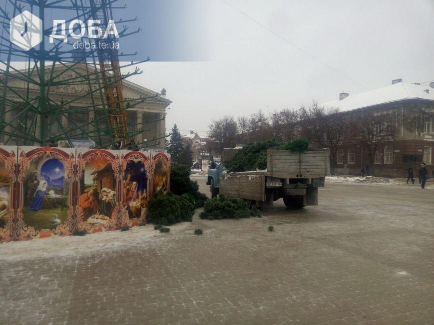 """Головну ялинку Тернополя почали """"одягати"""" у хвою (фото), фото-2"""