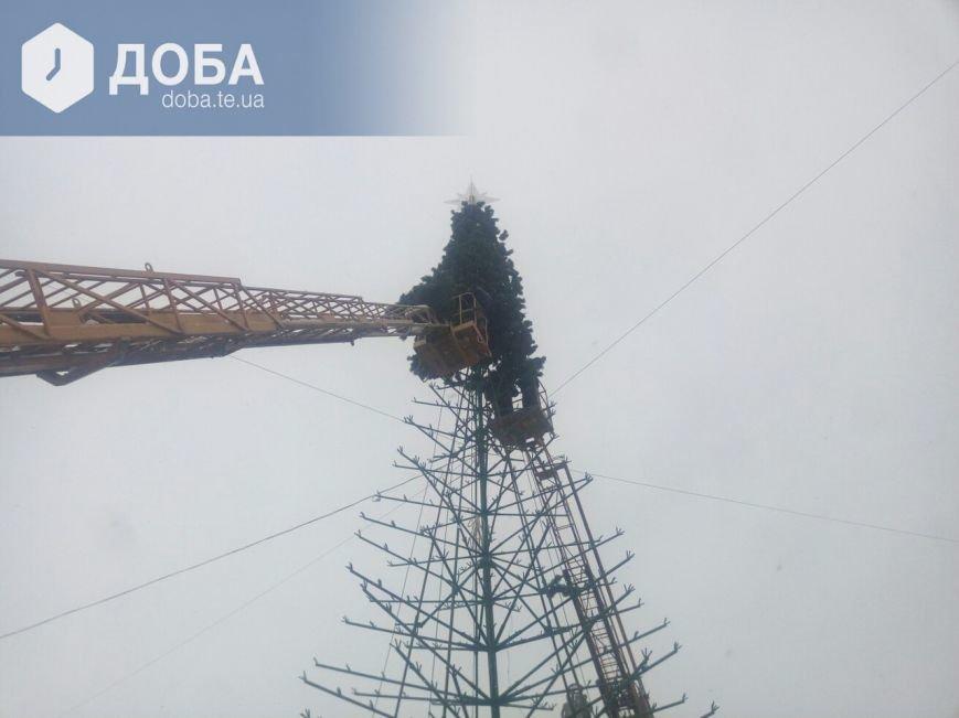 """Головну ялинку Тернополя почали """"одягати"""" у хвою (фото), фото-1"""