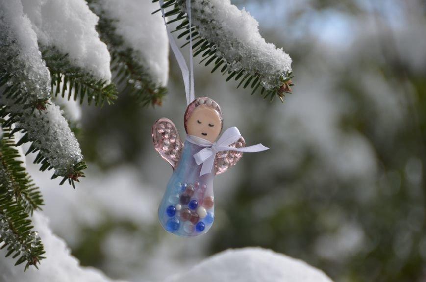 Рождественские ели Никитского сада. Их здесь 20 видов, фото-3
